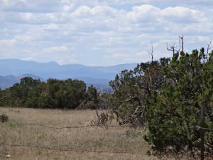 arroyo-hondo-trail-dsc01250